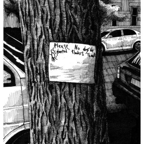 NYC_No Dogs